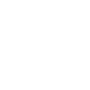Localogy Leaders Award White